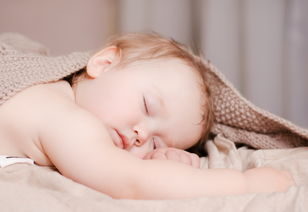 Master the Skills of Mosquito Control, Keep Your Baby Away From Mosquitoes